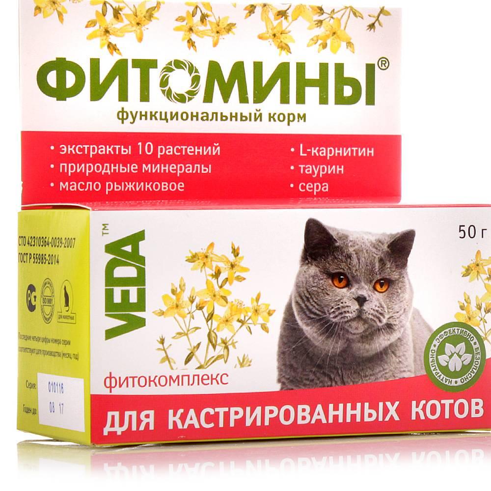 Лучшие кормы для стерилизованных кошек