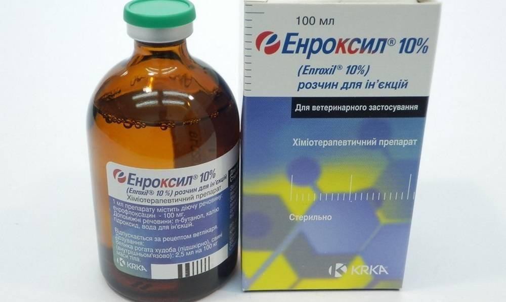 Инструкция по применению энрофлоксацина у кошек. рассчитайте оптимальную дозу препарата enrofloxacin. изучите широту антибактериального эффекта энрофлоксацина для кошек. улучшите эффективность терапии на 200%