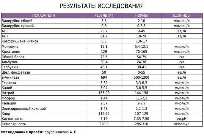 Кетоновые тела в моче: таблица расшифровки, причины повышения, лечение