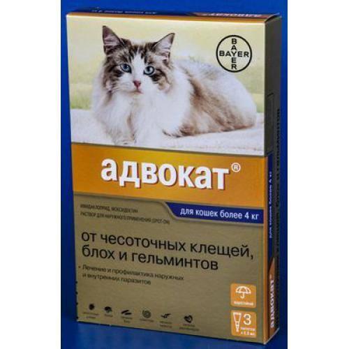 Капли от блох для кошек адвокат
