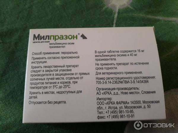 Обзор препарата милпразон для кошек: инструкция по применению, отзывы