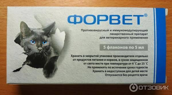 Форвет - инфекционный перитонит у кошек (фип)