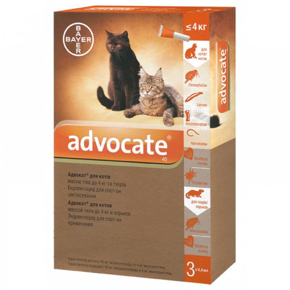 Капли адвокат для кошек