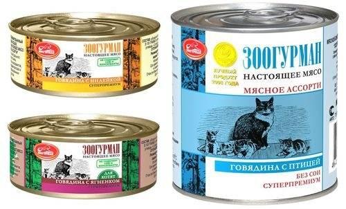 Корм для кошек leonardo / леонардо: влажные и сухие корма, отзывы ветеринаров