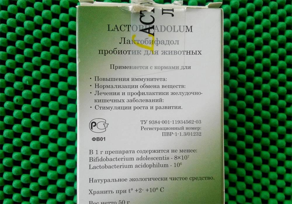 Информация про препарат для собак лактобифадол, которую нужно знать владельцам!