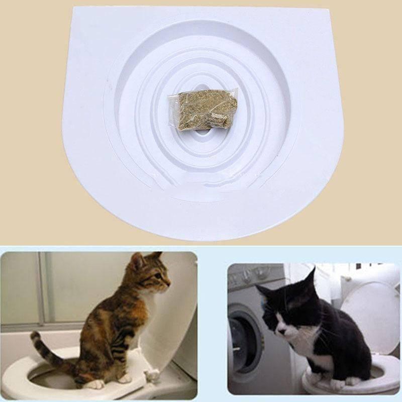 Как приучить кошку к унитазу?