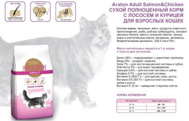 Паучи для кошек: что это такое, состав, виды и рейтинг