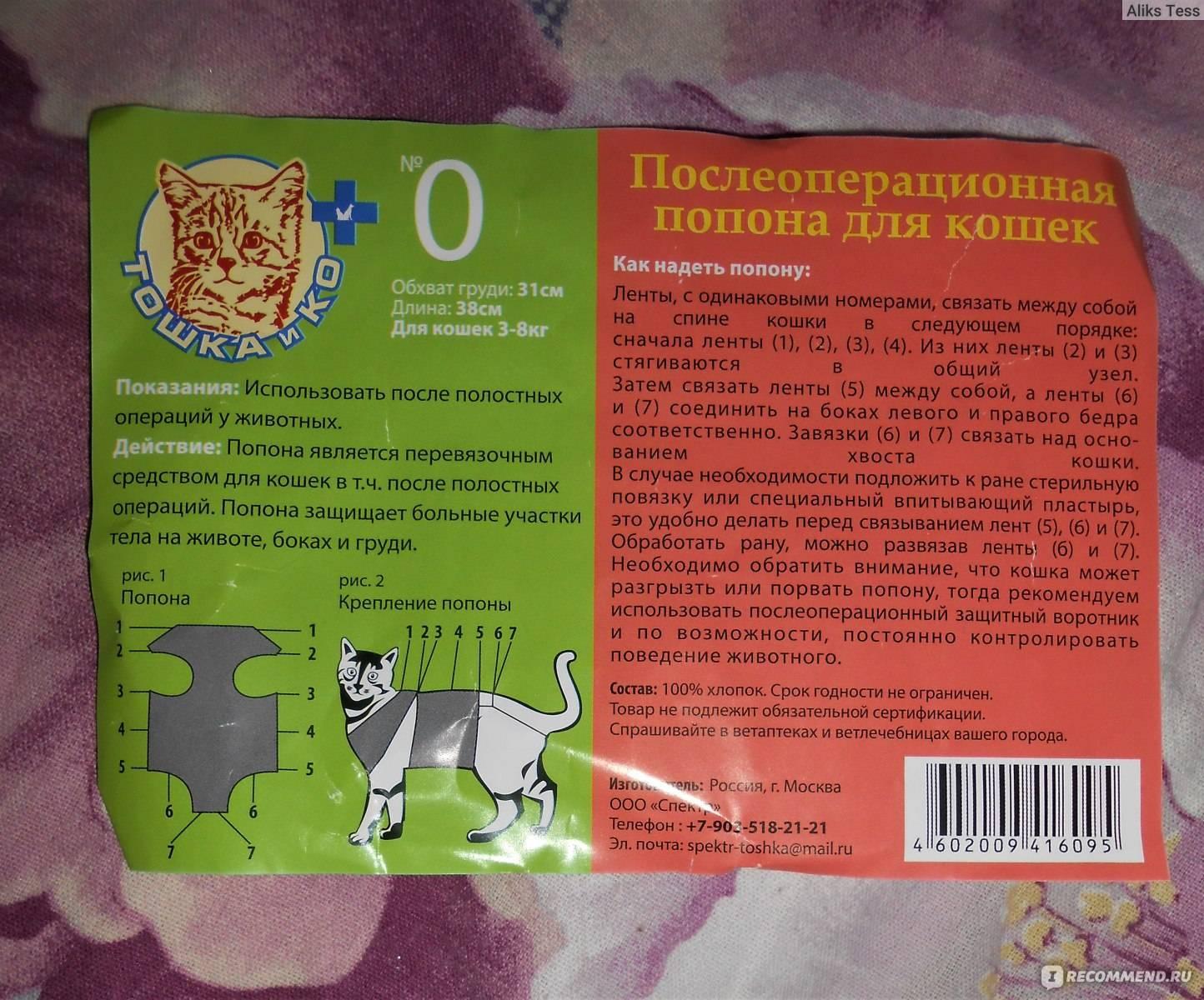 Попона для кошки после стерилизации: своими руками   фото, цена