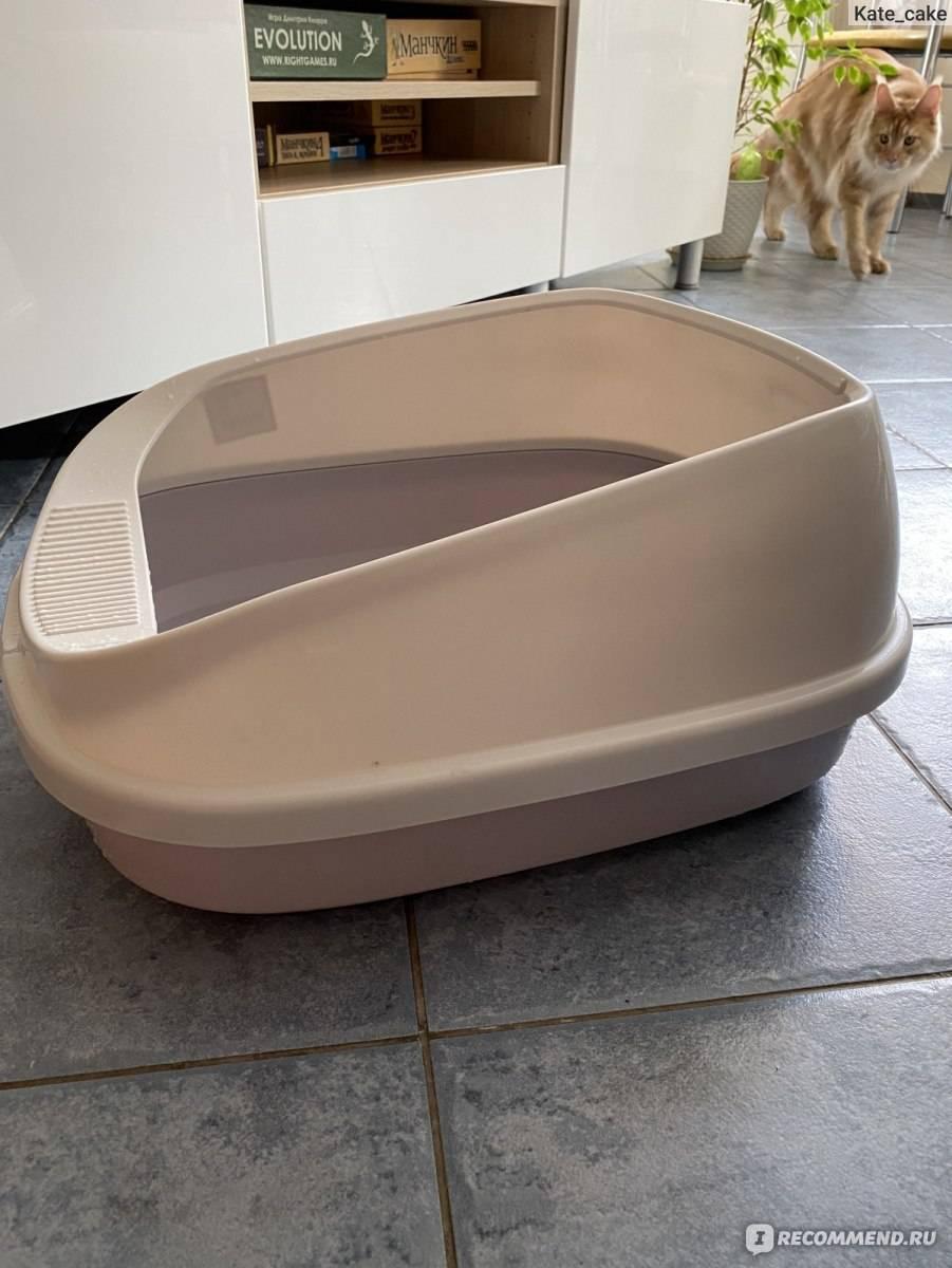 Выбор лотка для мейн куна и тонкости процесса приучения к туалету