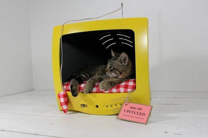 Сотворение кошкиного дома — от идеи до новоселья