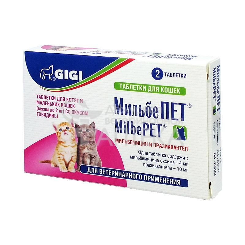Лучшие глистогонные препараты для кошек | цена, перед прививкой, отзывы