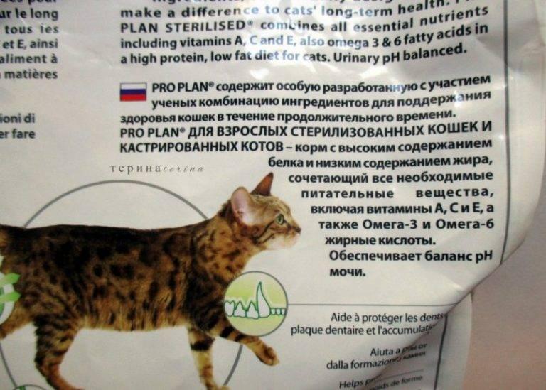 Что лучше для кошек проплан или хиллс? | в чем разница