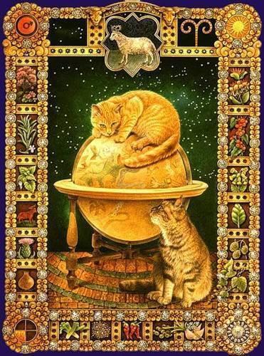 Телец. гороскоп для кошек
