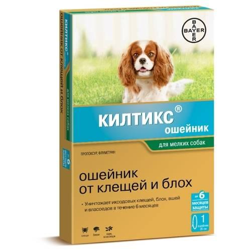 Ошейник форесто для кошек и собак