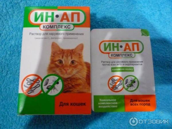 «ин-ап комплекс» – лечение и профилактика кошек и собак