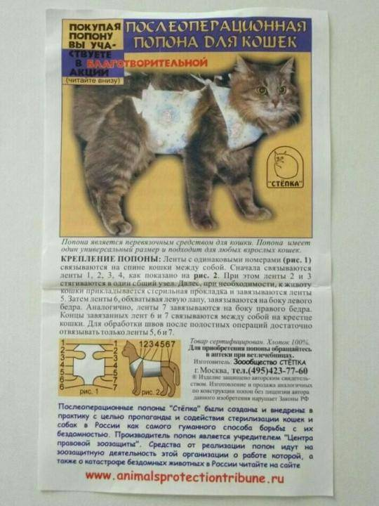 Попона для кошки: подробная инструкция о том как сшить и одеть