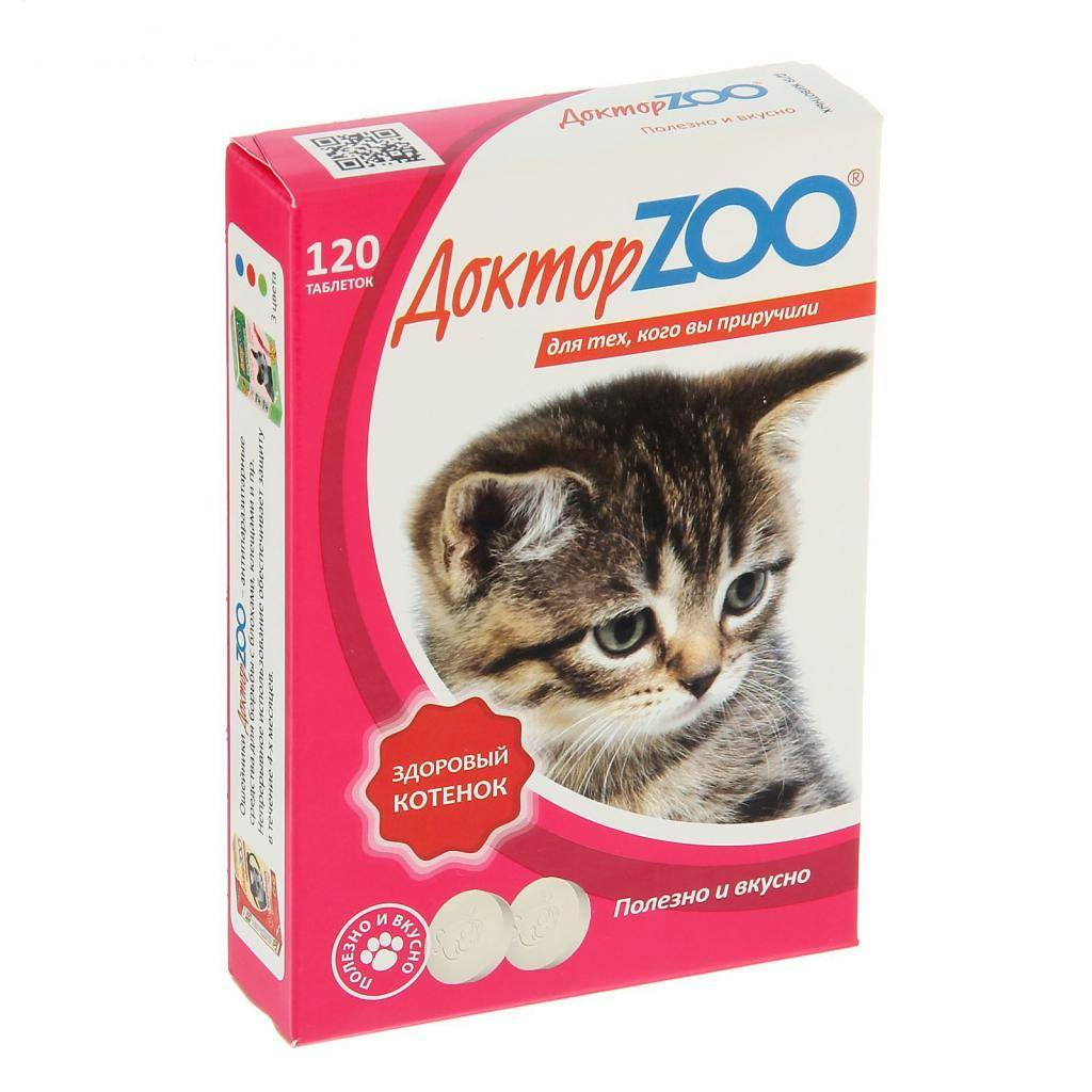 12 лучших витаминов для кошек и котов