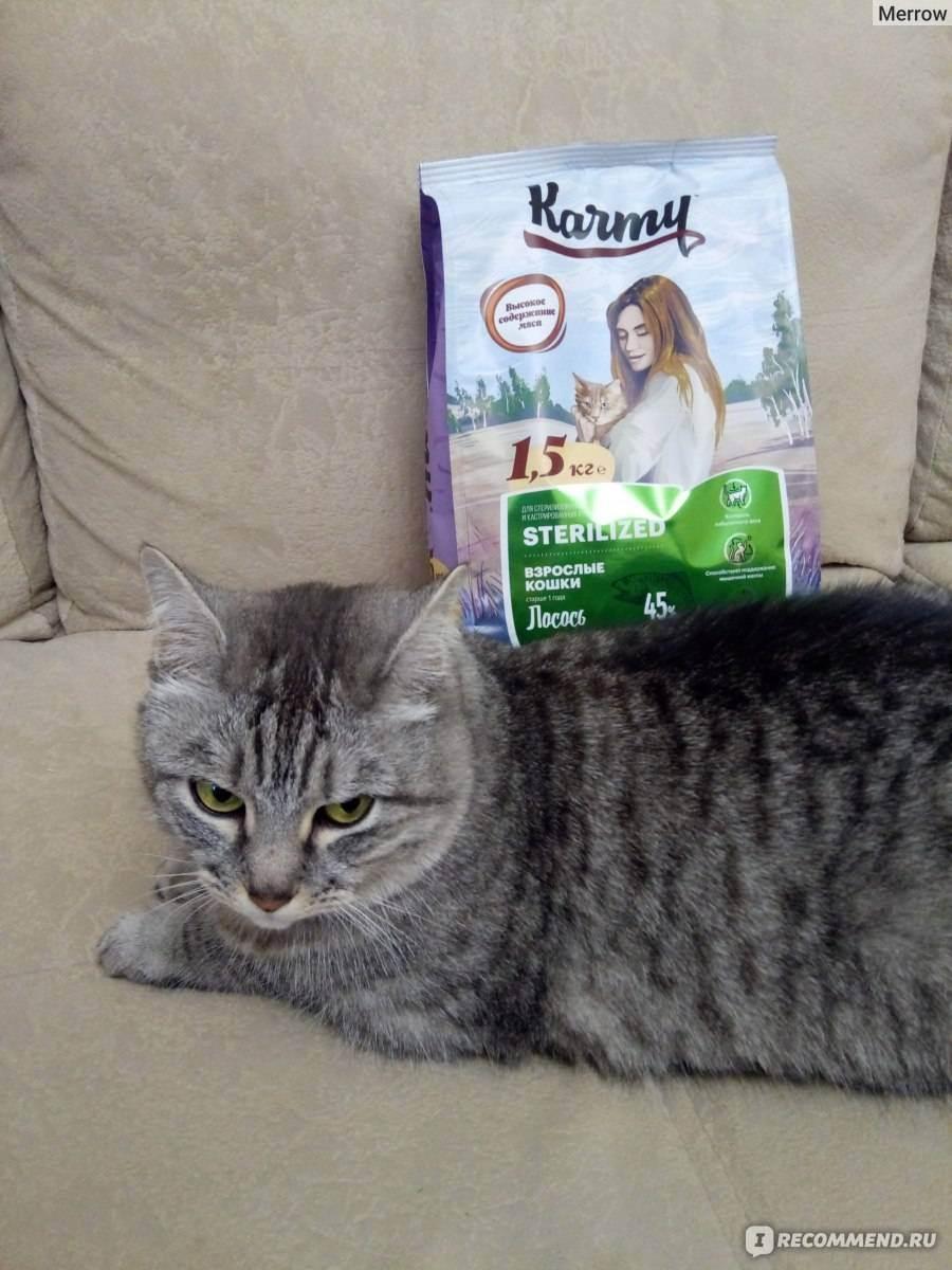 Вопрос про корм для стерилизованных кошек. - можно ли есть кошачий корм - запись пользователя ольга (lyolik1966) в сообществе домашние животные в категории помогите советом - babyblog.ru