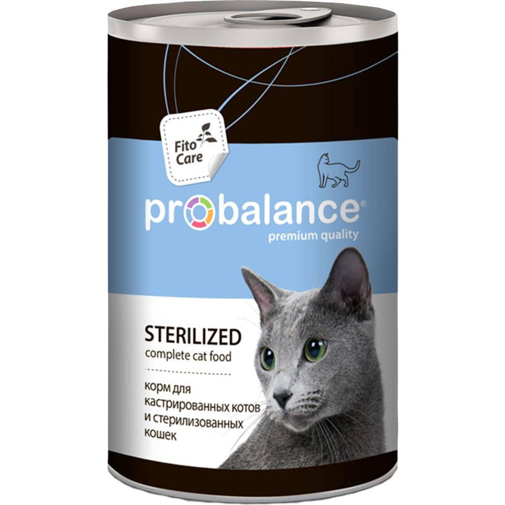 Рейтинг кормов для стерилизованной кошки и кота, чем кормить: сухой и жидкий