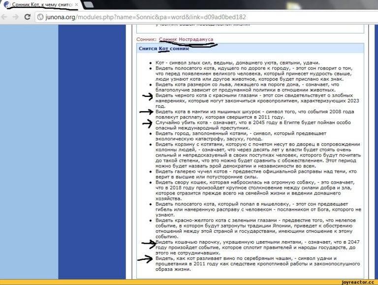 Сонник. кошки: сонник миллера, другие сонники, к чему снятся коты и толкования сна - tolksnov.ru