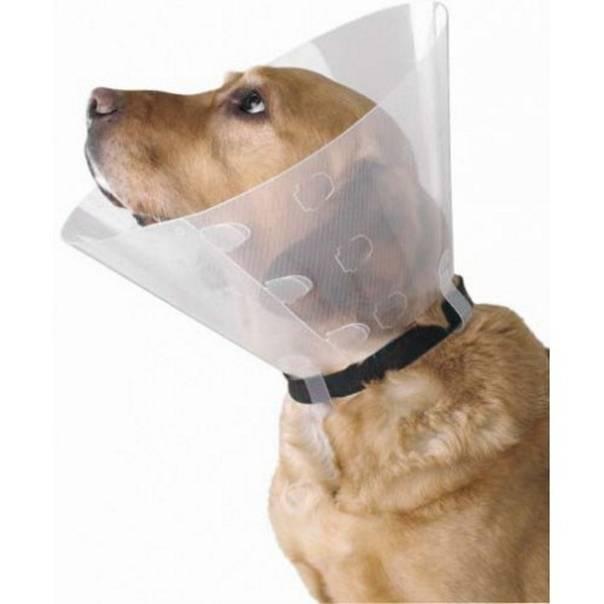 Воротник для собаки — послеоперационный и елизаветинский
