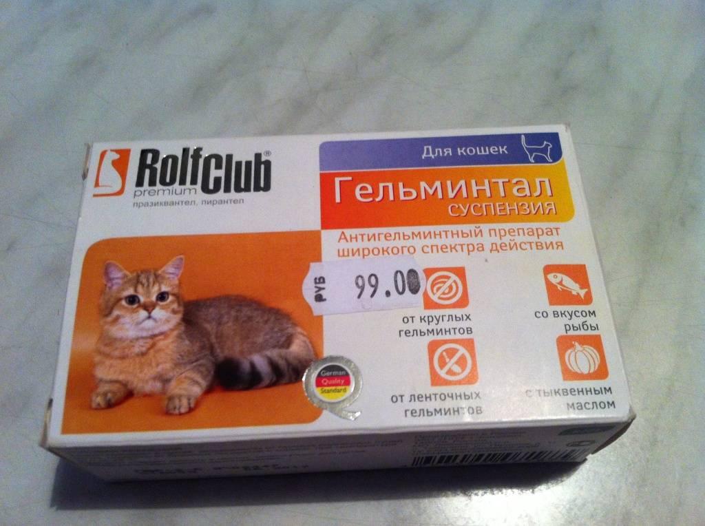 Как выбрать для кошки хороший препарат от глистов? | мир кошек обзор лучших препаратов от глистов для кошек | мир кошек