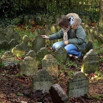 Как правильно похоронить кота?