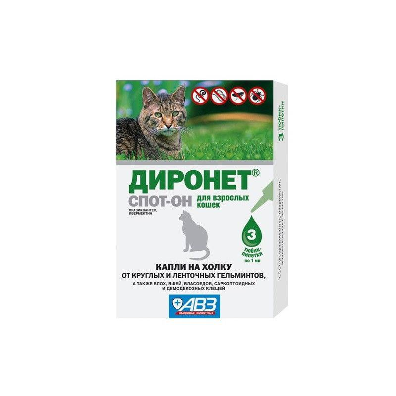 ᐉ диронет спот-он для кошек и котят: инструкция по применению - kcc-zoo.ru