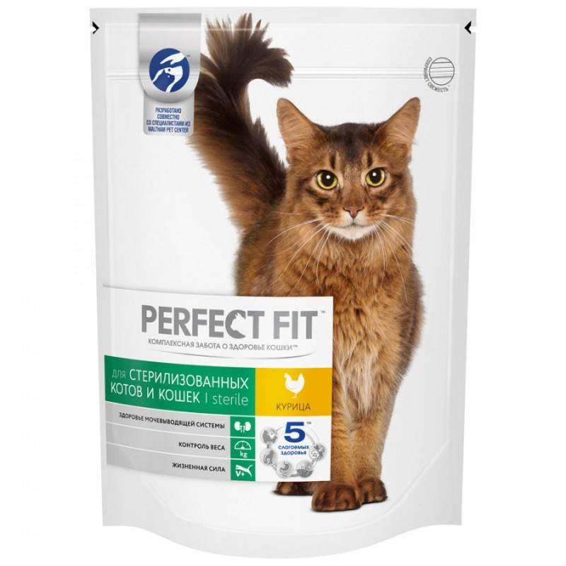 Корм для стерилизованных и кастрированных кошек и котов: какой лучше по составу и отзывам ветеринаров, можно ли кормить питомца обычной едой