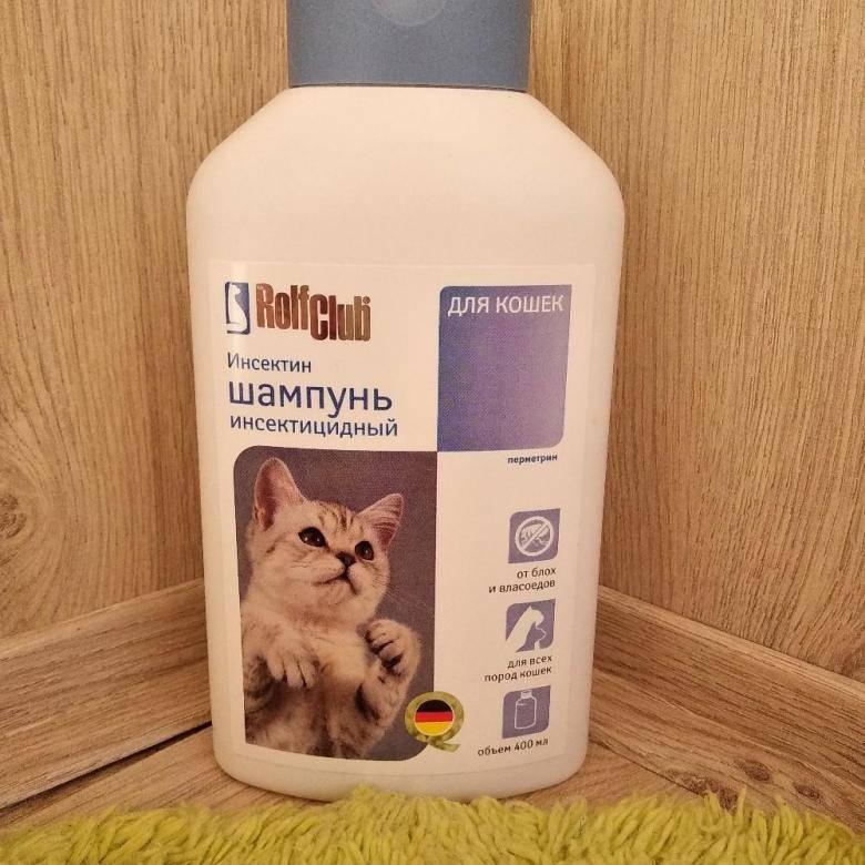 Шампунь для кошек от аллергии человека