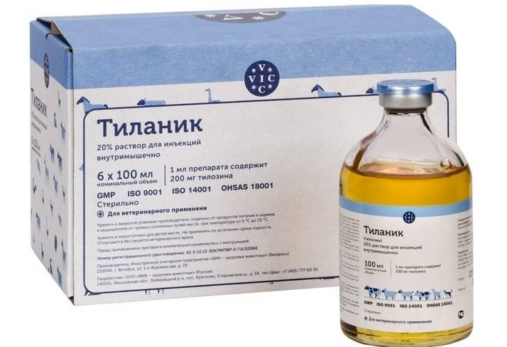 Антибактериальный препарат тилозин для лечения кошек