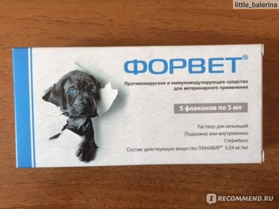 Форвет для кошек — инструкция по применению - oozoo.ru