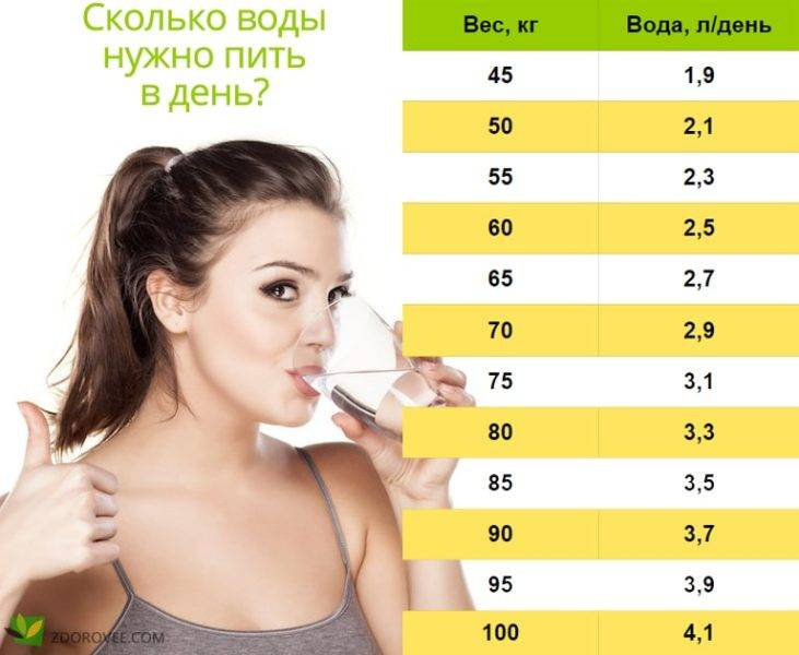 Если кошка пьет много воды? причины, а также расчет нормы потребления воды