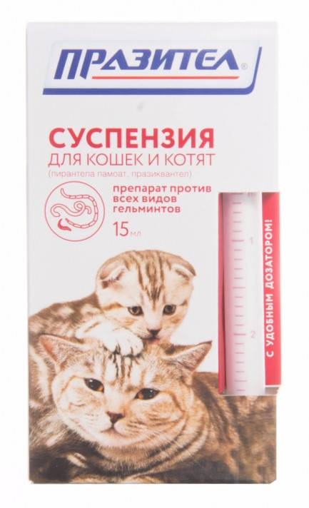 Таблетки от глистов для кошек