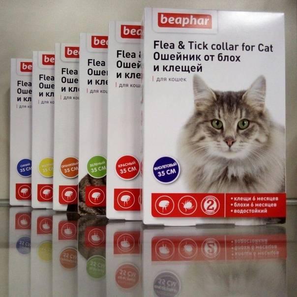 Витамины beaphar для кошек