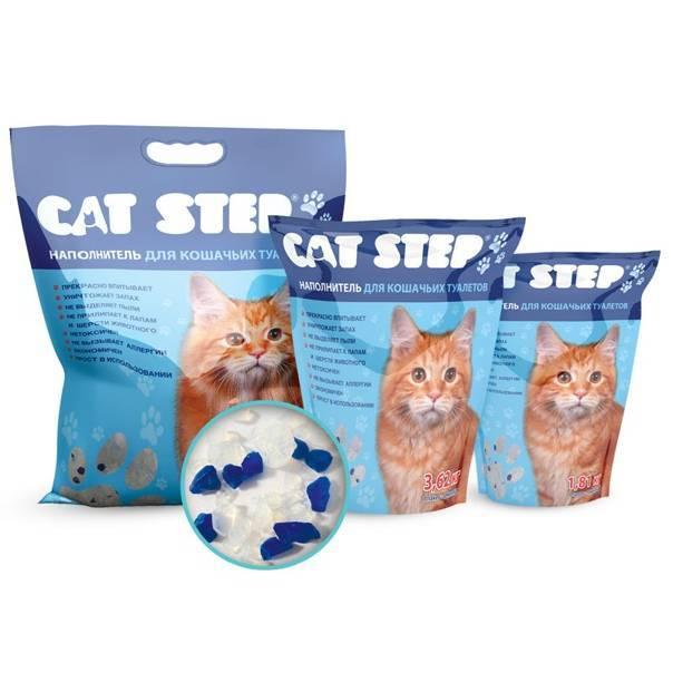 Что делать если котенок ест силикагелевый наполнитель