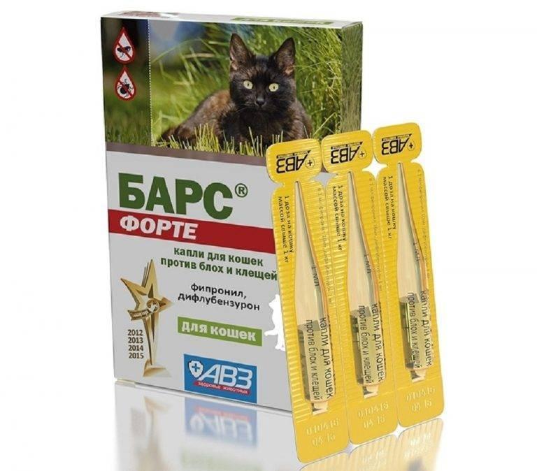 """""""барс"""" – капли от блох и клещей для кошек: инструкция по применению, состав средства """"форте"""""""
