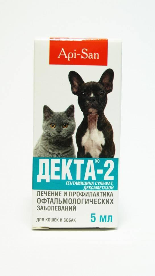 """""""бриллиантовые глаза"""": капли для кошек и собак (инструкция)"""