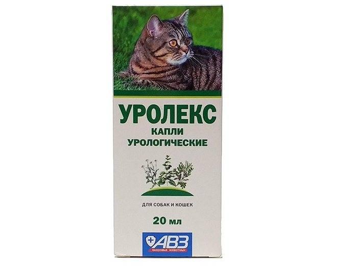 Мочекаменная болезнь у котов мкб описание болезни