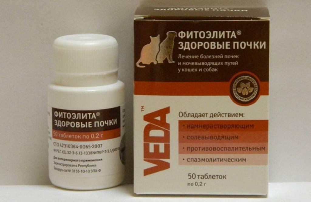Фитоэлита здоровые почки для кошек: инструкция по применению таблеток, свойства препарата