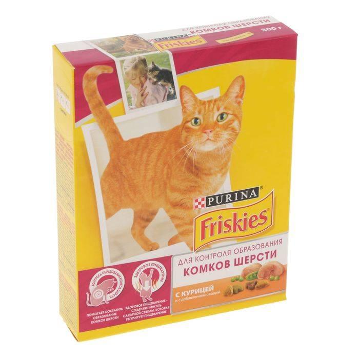 Самый лучший корм и котов для кошек по мнению ветеринаров   рейтинг