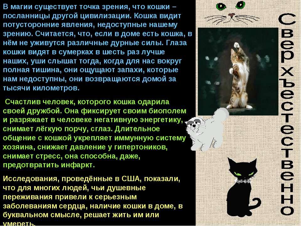 Почему у кошки 9 жизней?