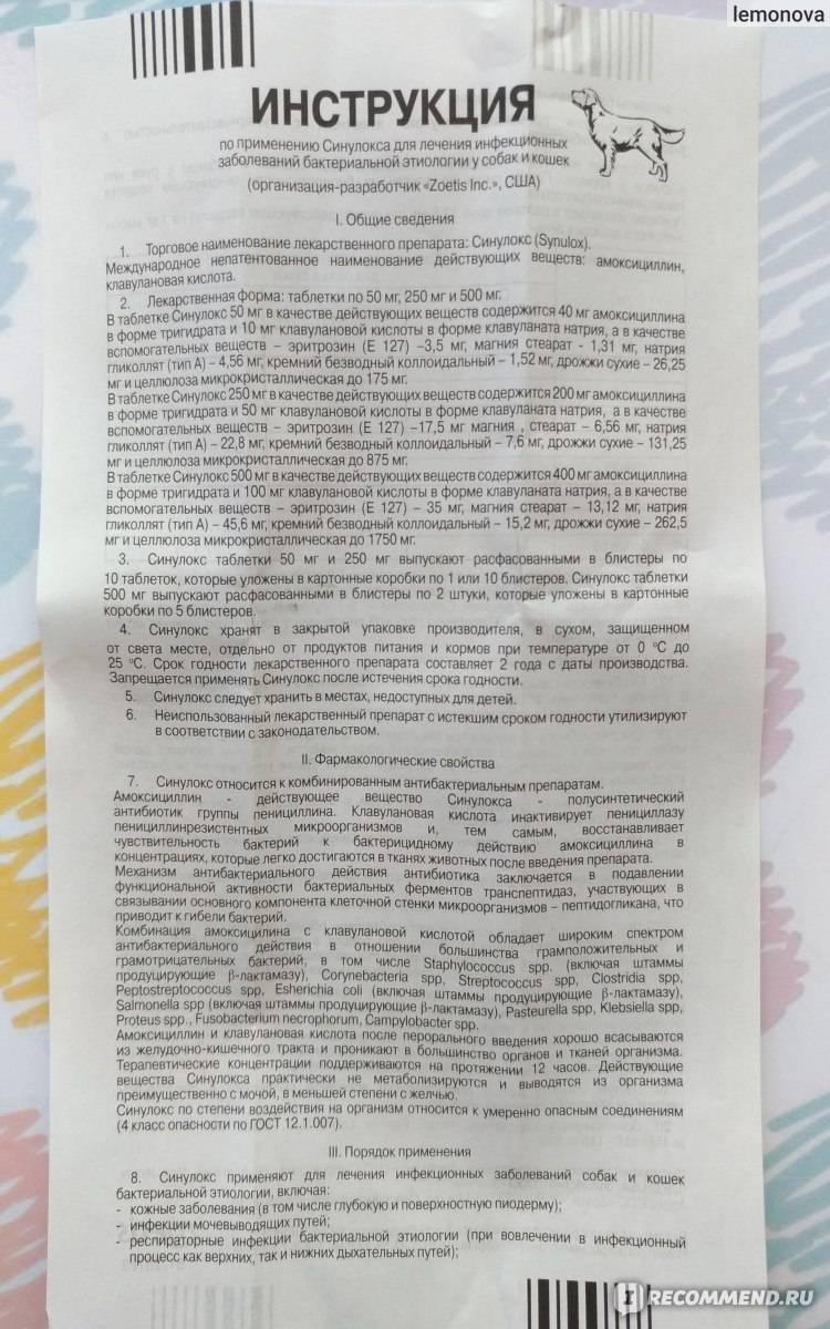 Синулокс 50 инструкция. применение таблеток синулокса 50 мг в лечении животных