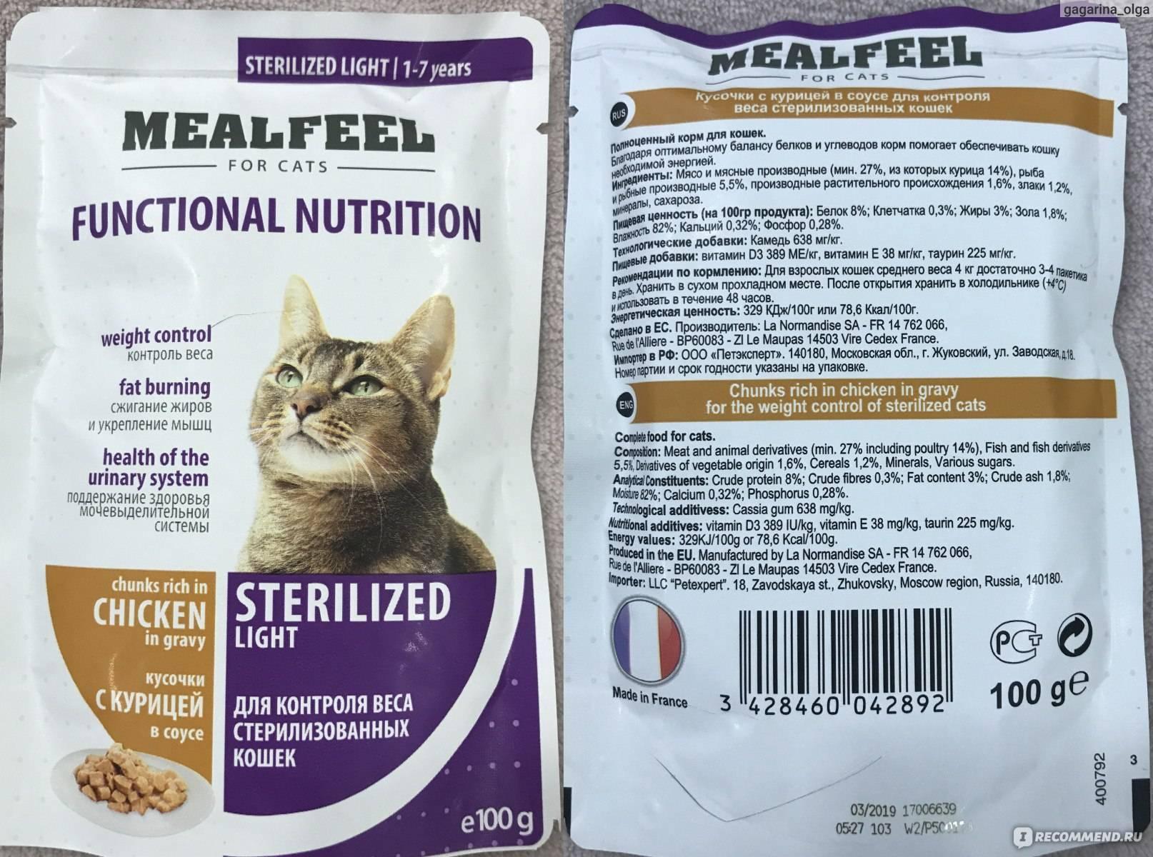 Классы кормов для кошек: отличия и нюансы выбора