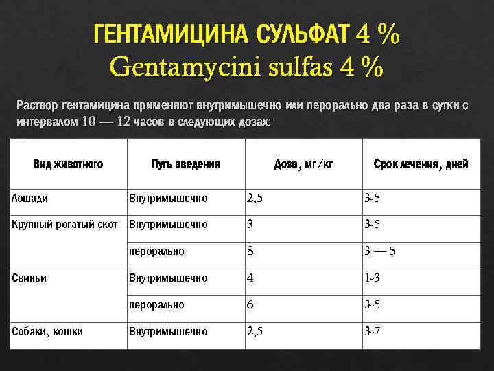 Гентамицин для животных | инструкция по применению гентамицина в ветеринарии