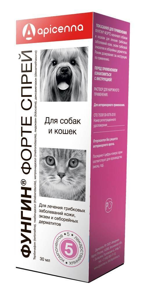 Фунгин форте для кошек и собак: инструкция по применению, состав, схема и особенности использования