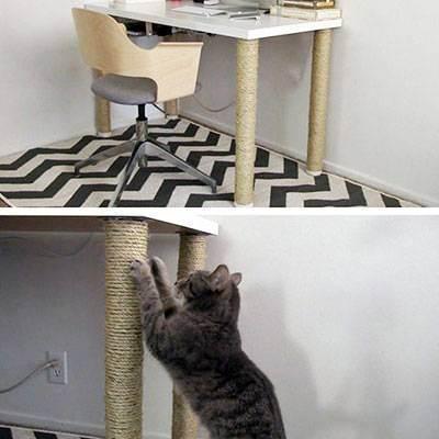 Направляем инстинкты в нужное русло, или как сделать когтеточку для кошек своими руками
