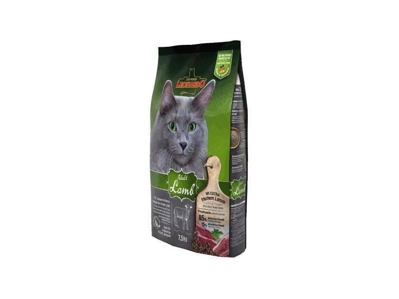 Leonardo корм для кошек - отзывы, описание сухого и влажного вида