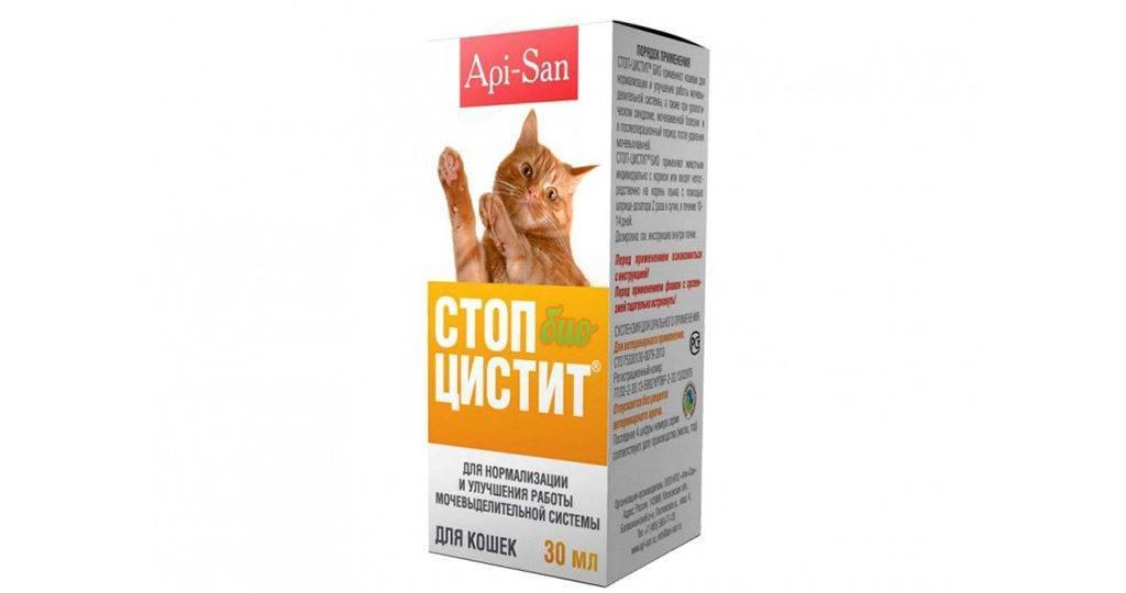 «стоп-цистит» (таблетки, суспензия) для кошек: инструкция по применению