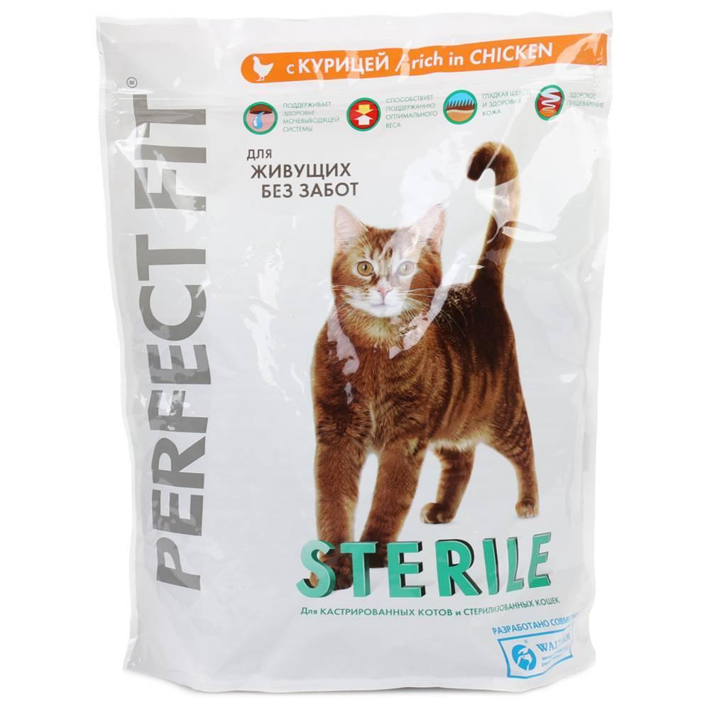 Как правильно кормить стерилизованных и кастрированных кошек и котов